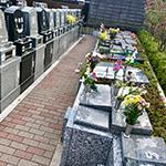 一般墓地、樹木型墓地、納骨堂からお選びいただけます