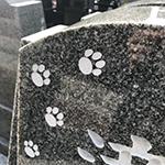 ペットと一緒に入れるお墓